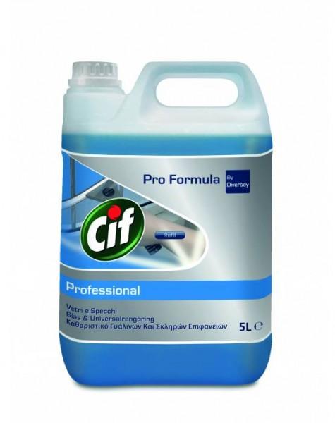 Cif Professional, Fenster & Oberflächenreiniger, 2 x 5 Liter Kanister