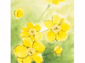"""Servietten Airlaid 60 gm2, 40 x 40 cm 1/4 Falz, """"Anemone"""" gelb/grün"""